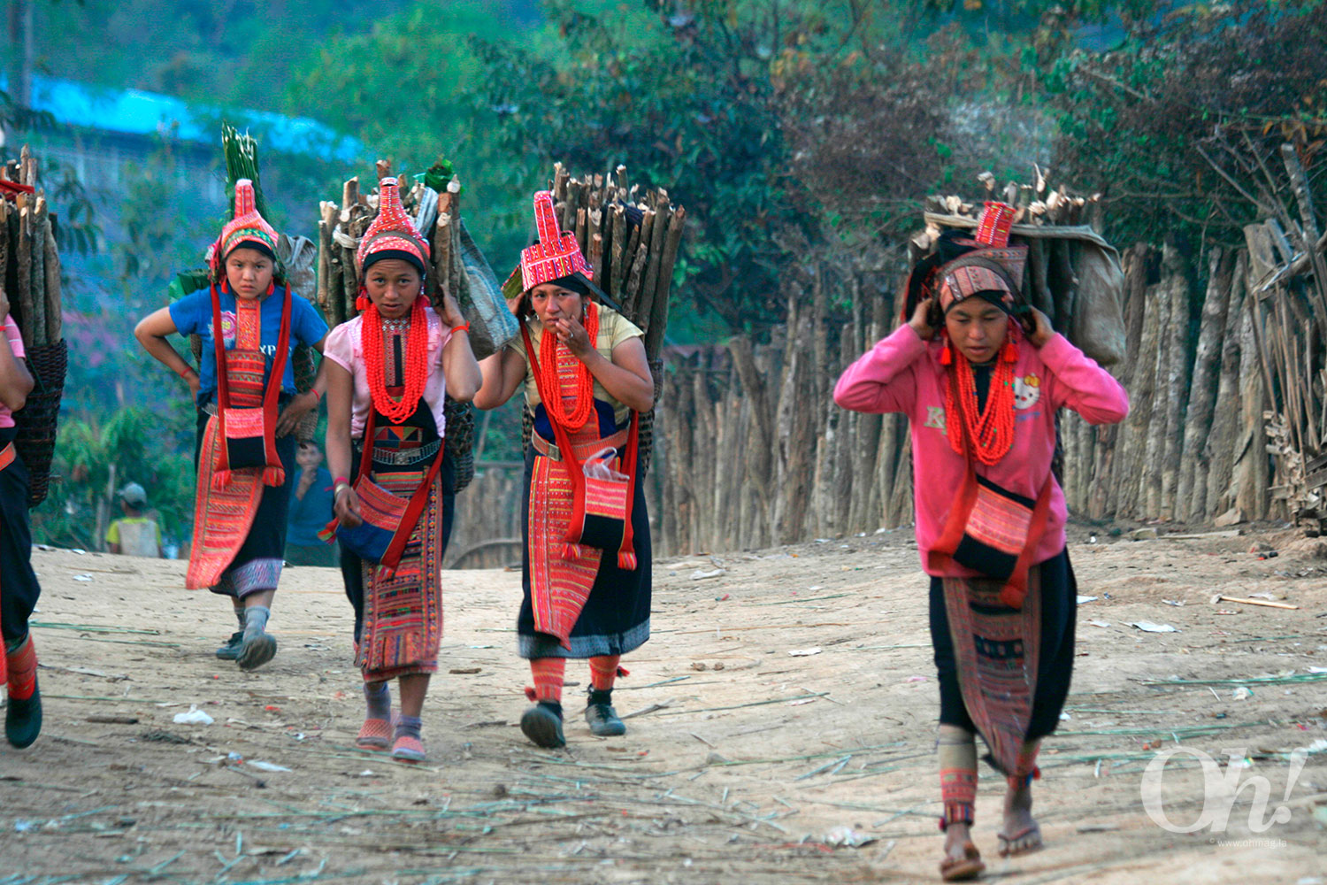 Women carrying firewoods at an ethnic tribe in Phongsaly, Nothern Laos.